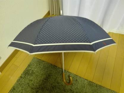 It is my individual parasol for summer season which is 3rd generations. I can use it not only for sunny day but rainy day as well, because it is light water-proof.